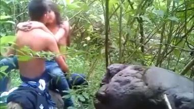 Tamil sex video of young people in the jungle